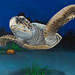 CHKD- Underwater Ceiling Mural