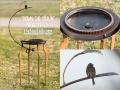 Birdbath DOWN THE-DRAIN Metal Art