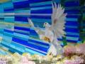Healing Pew 08 dove