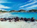 Orient Beach  painting by Cindy Chinn