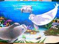 Underwater Mural Aquarium 4x8 09
