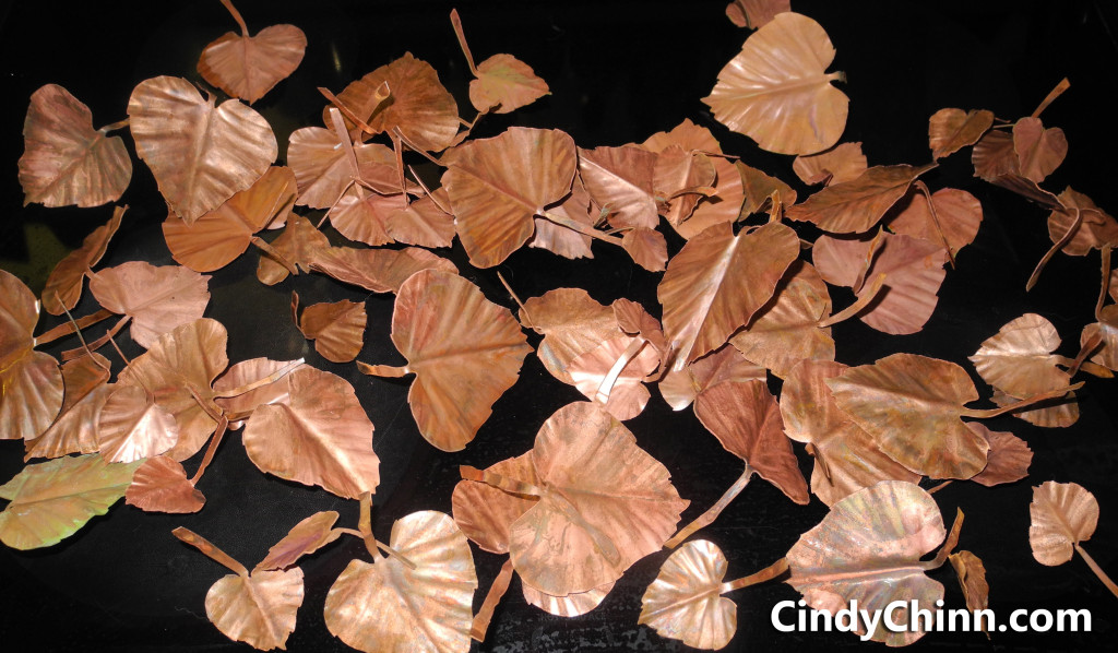 CopperCottonWoodLeaves