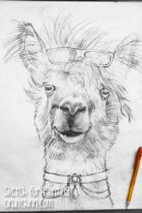 llama painting - sketch full