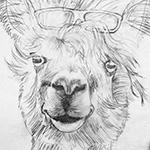 llama painting - sketch